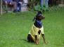 Sommerfest 14.07.2012