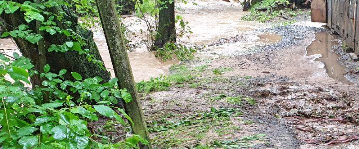Wegen des Hochwassers findet das Training erst wieder ab dem 01.06.2019 statt
