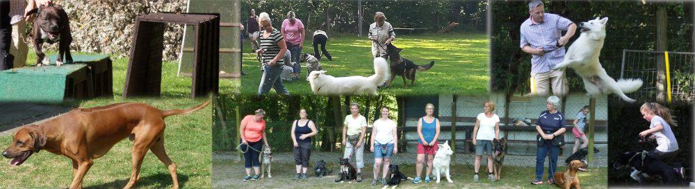 Hundesportverein-Lohfelden e.V.